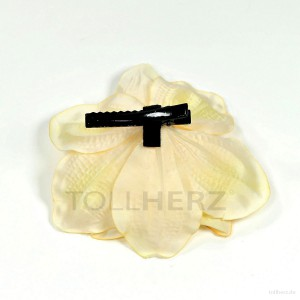 AB-222 Haarblüte, Haarblume Amaryllis in champagner-cremeweiß, Ø ca. 11 cm, Höhe ca. 5 cm