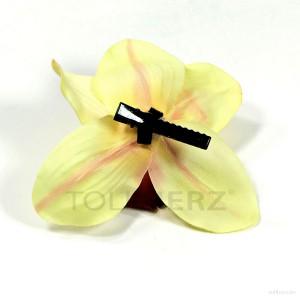 AB-238 Hawaiiblüte, Haarblume Orchidee in pastellgelb-bordeauxrot, Ø ca. 12 cm, Höhe ca. 4 cm